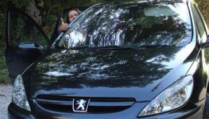 Especificaciones Del Peugeot 307